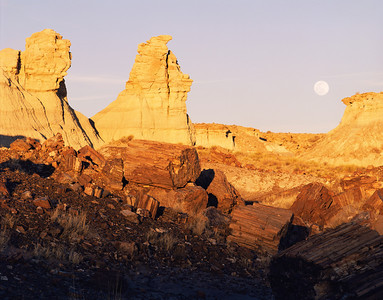 Petrified Forest Natn'l., AZ/Mon. Moonrise at sunset in the Blue Mesa area/logs foregrnd2/86h  xb