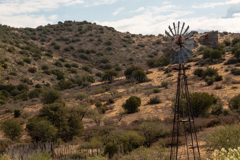 Arizona 11-13©DonnaLovelyPhotos com-0504