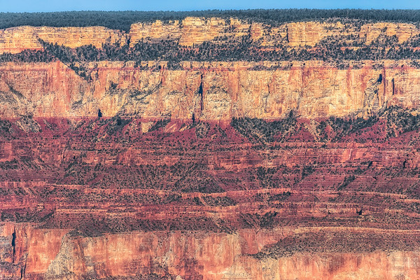 Geologic cross-section