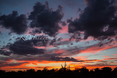 Hard to beat a Tucson sunset during monsoon season.......