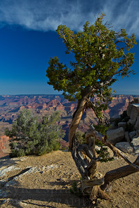 Afternoon views from Lipan Point. The stop along the West Rim Drive in Grand Canyon National Park is one of the many inspiring vistas of the deep canyon.  © Kyle Spradley Photography | www.kspradleyphoto.com