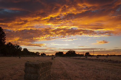 My Favorite Sunset