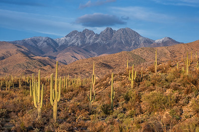 Four Peaks Cloaked