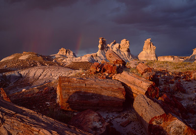 Petrified Forest National, AZ/Park, Blue Mesa, petrified log sections and eroded clay formations at sunset with rainbows and storm. 991h                           adc