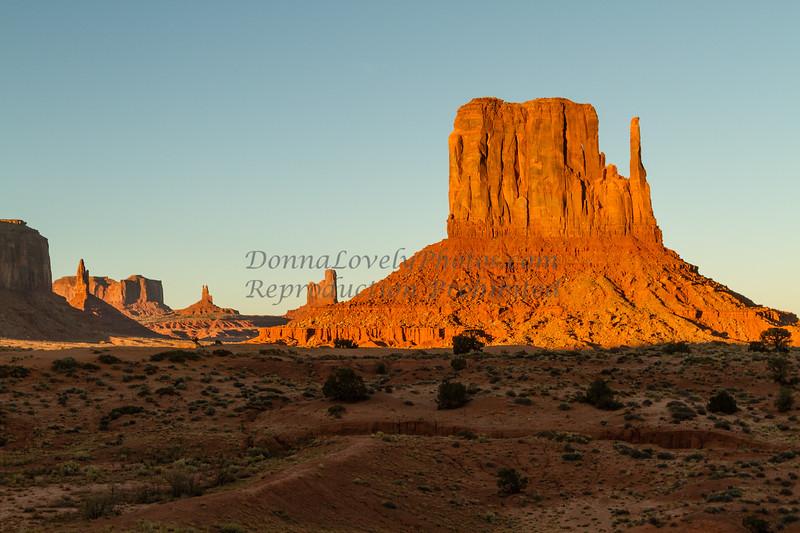 Arizona 11-13©DonnaLovelyPhotos com-0028