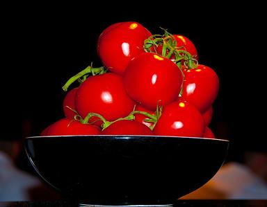 Tomatoes-NAP_1947