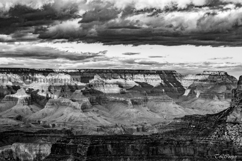 Black & White of the Grand Canyon