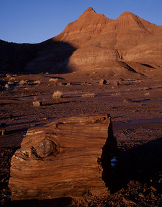 Petrified Forest National, AZ/Park. Petrified wood sections amid snow-melt water channels in the Black Forest section of the Painted Desert. 197V4
