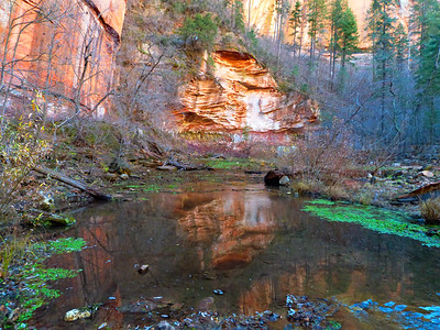 Oak Creek Canyon Trail hint of color