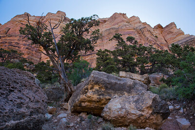 Scenes from along the famous South Kaibab Trail that starts near Yaki Point and descends into the canyon. I hiked only to Cedar Ridge, a flat spot that juts out into the canyon, just a couple thousand feet below the rim.  © Kyle Spradley Photography | www.kspradleyphoto.com