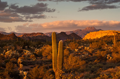 The magic hour.   Arizona style. Superstition Mountains