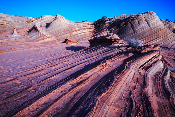 Desert Stripes