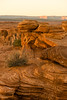 Horseshoe Bend_0645©DonnaLovelyPhotos com_