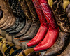 Red Kickers©DonnaLovelyPhotos com-