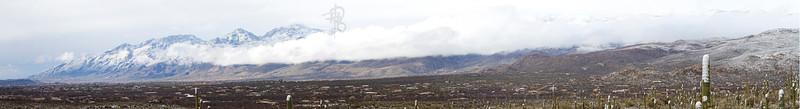 RBP IMG_8026 Saguaro National Park Catalinas in Snow