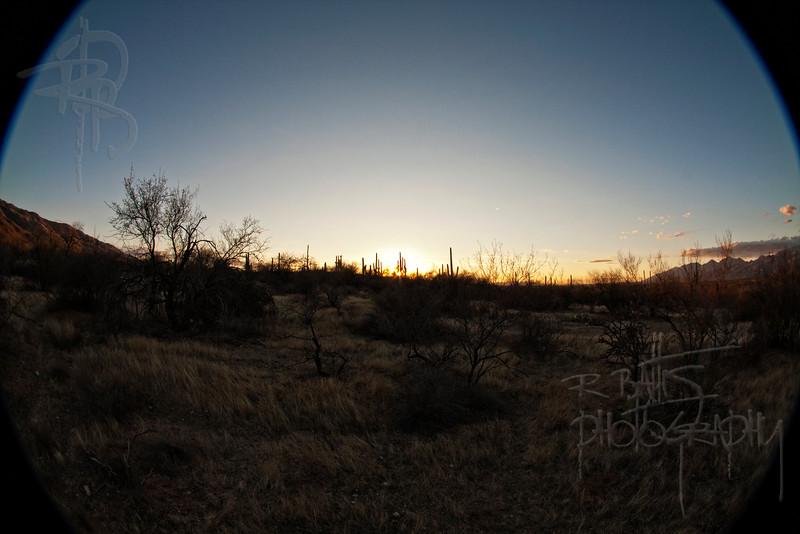 RBP IMG_1418 Saguaro National Park Sunset