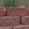 A study in textures, bricks in my yard