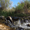 Waterfall at Riparian