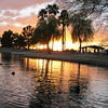 Reflections.<br /> Freestone Park, Gilbert AZ