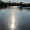 Afternoon sun reflecting on pond,<br /> Riparian Preserve, Gilbert