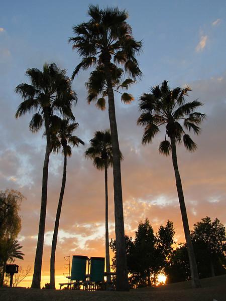 Freestone Park, Gilbert AZ