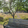 "Topic this week was a study in ""Lens Flare""<br /> Park Bench"