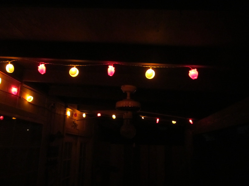 I put up lights on my patio!  funnnnn :) <br /> each light is a strawberry or orange slice