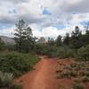 the Mescal trail, Sedona
