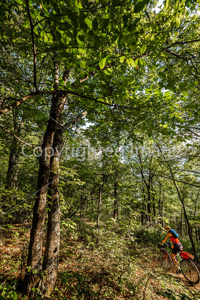 Biker on Upper Buffalo Mountain Bike Trail near junction of ACA Northwest & Central Loops & Cave Mt  Road - C2_D5A1458 - 72 ppi