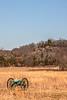 Pea Ridge Nat'l Military Park, Arkansas -- battle anniversary encampment - C3_MG_0003-Edit-2- 72 ppi
