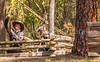 Poison Springs, Arkansas - 150th Anniversary - -0440 - 72 ppi