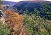 Biker at Hawksbill Crag, northwest Arkansas, Upper Buffalo Wilderness Area, after 1 5-mile hike in from gravel road - 31 - 72 ppi