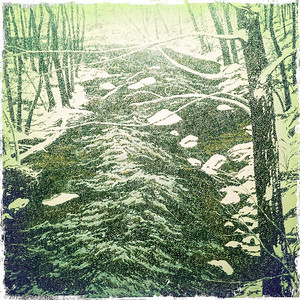 Excerpt from Snow on Alden Brook - Neil G. Welliver