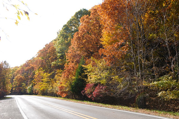 Fall Colors Photo Tour - 2008