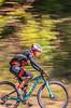 Mountain biker(s) on Slaughter Pen Trails near Bentonville, AR_W7A0890-Edit - 72 ppi-3