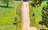 Biker on CR 2545, 6 miles south of Marble, ACA's Northwest Loop - C1_1C30025 - 72 ppi-2