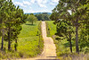 Biker on CR 2545, 6 miles south of Marble, ACA's Northwest Loop - C1_1C30021 - 72 ppi