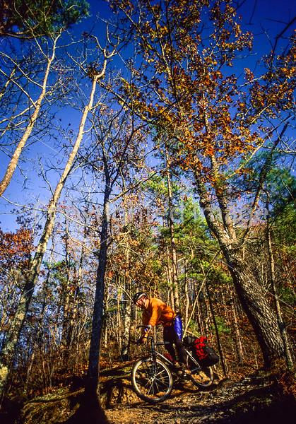 Mountain biker on Womble Trail in Arkansas' Ouachita Mountains - 52 - 72 ppi