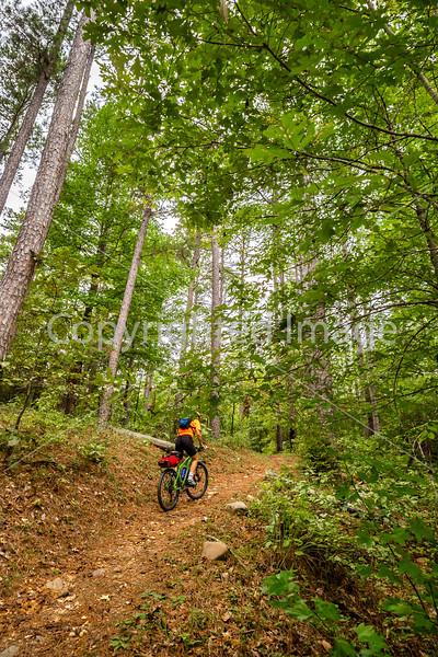 Mountain biker on LOViT singletrack near Blakely Mountain Dam -C2_D5A1820 - 72 ppi