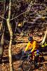 Mountain biker on Womble Trail in Arkansas' Ouachita Mountains - 71 - 72 ppi
