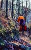 Mountain biker on Womble Trail in Arkansas' Ouachita Mountains - 115 - 72 ppi-2