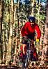 Mountain biker on Womble Trail in Arkansas' Ouachita Mountains - 64 - 72 ppi