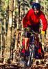 Mountain biker on Womble Trail in Arkansas' Ouachita Mountains - 64 - 72 ppi-2