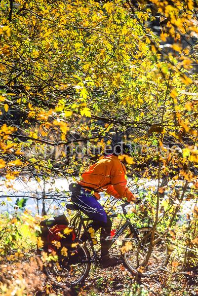Mountain biker on Womble Trail in Arkansas' Ouachita Mountains - 87 - 72 ppi
