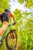 Mountain biker on Womble Trail near AR 298 Trailhead - C2_D5A2069-Edit - 72 ppi