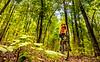 Mountain biker on Womble Trail near AR 298 Trailhead - C2_D5A2015 - 72 ppi-2