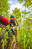 Mountain biker on Womble Trail near AR 298 Trailhead - C2_D5A2071 - 72 ppi