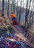 Mountain biker on Womble Trail in Arkansas' Ouachita Mountains - 11 - 72 ppi-2