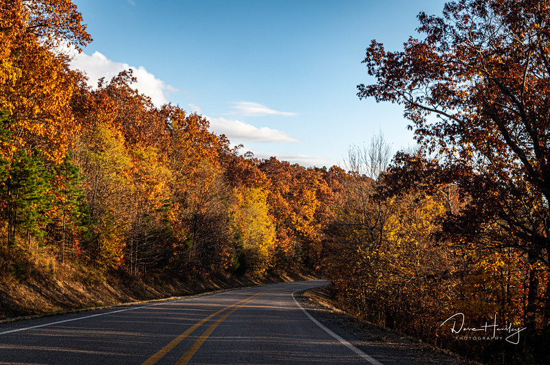 Ozarks in late afternoon light