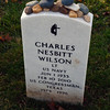 Charles Nesbitt grave,  Arlington National Cemetery Veterans Day